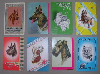 animal playing card backs